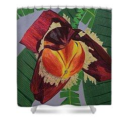 Banana Blossom Shower Curtain
