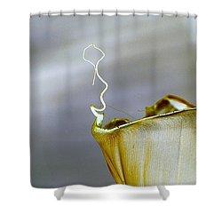 Banana Leaf Shower Curtain