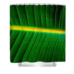 Banana Plant Leaf Shower Curtain