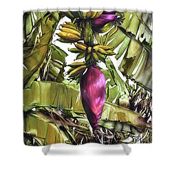 Shower Curtain featuring the painting Banana Tree No.2 by Chonkhet Phanwichien