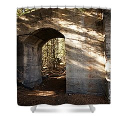 Bankhead Ruins Shower Curtain