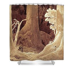 Banks Of The Topirambarana Shower Curtain by Pg Reproductions