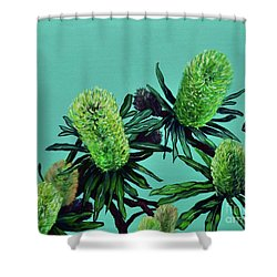 Banksias Shower Curtain