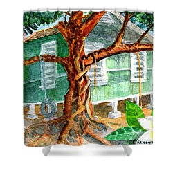 Banyan In The Backyard Shower Curtain