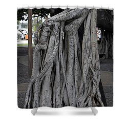 Banyan Tree, Maui Shower Curtain