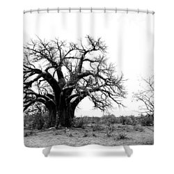 Baobab Landscape Shower Curtain by Bruce J Robinson