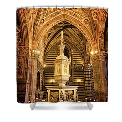 Shower Curtain featuring the photograph Baptistery Siena Italy by Joan Carroll