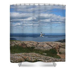 Bar Harbor View From Cadillac Shower Curtain
