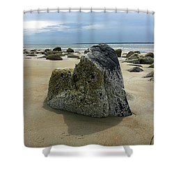 Bar Head Rocks Shower Curtain