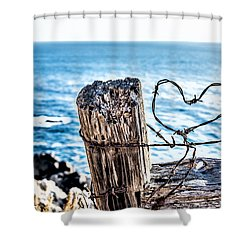 Barb Wire Heart Shower Curtain by Joseph S Giacalone