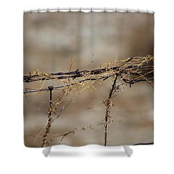 Barbed Wire Entwined With Dried Vine In Autumn Shower Curtain