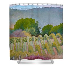 Barboursville Vineyards 1 Shower Curtain by Catherine Twomey
