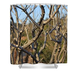 Bare The Beauty Shower Curtain