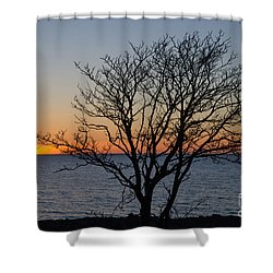 Shower Curtain featuring the photograph Bare Tree At Sunset by Kennerth and Birgitta Kullman