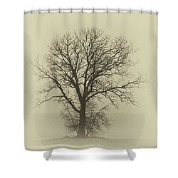 Bare Tree In Fog- Nik Filter Shower Curtain by Nancy Landry