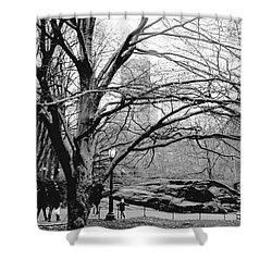 Bare Tree On Walking Path Bw Shower Curtain