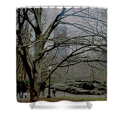 Bare Tree On Walking Path Shower Curtain