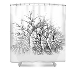 Bare Trees Daylight Shower Curtain