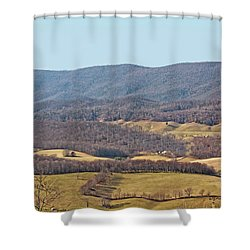 Bare Winter Shower Curtain by Denise Romano