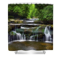 Bark Creek #1 Shower Curtain