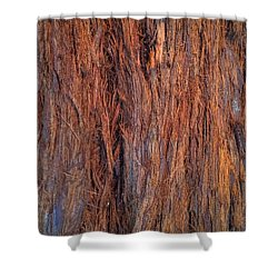 Shaggy Bark Shower Curtain