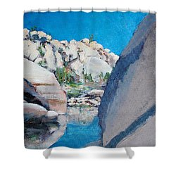Barker Dam Shower Curtain by Richard Willson