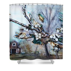 Barn And Blossoms Shower Curtain by Tara Thelen
