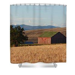 Barn And Wheat Shower Curtain