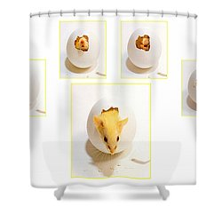 Barn Mouse Shower Curtain