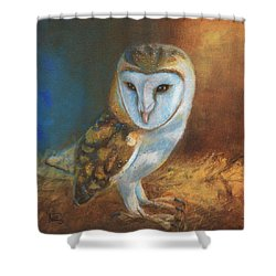 Barn Owl Blue Shower Curtain by Terry Webb Harshman