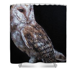 Barn Owl Shower Curtain by Cherise Foster