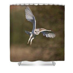Barn Owl Cornering Shower Curtain