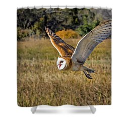 Barn Owl Flight 6 Shower Curtain