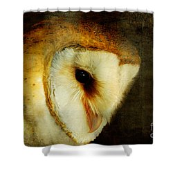 Barn Owl Shower Curtain by Lois Bryan