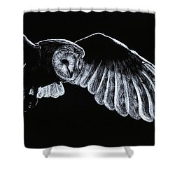 Barn Owl Shower Curtain by Richard Young