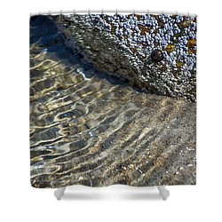 Barnacles And Reflection Shower Curtain