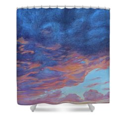 Barnsdall Hill Shower Curtain by Andrew Danielsen