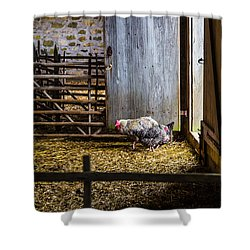 Barnyard Friends Shower Curtain