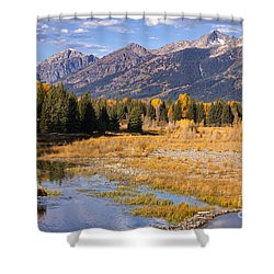 Bull In The Beaver Ponds Shower Curtain