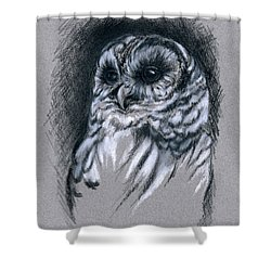 Shower Curtain featuring the drawing Barred Owl by MM Anderson