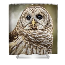 Shower Curtain featuring the photograph Hoot by Steven Sparks