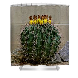 Shower Curtain featuring the photograph Barrel Against Wall No50 by Mark Myhaver