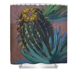 Barrel Cactus In Bloom - Boyce Thompson Arboretum Shower Curtain