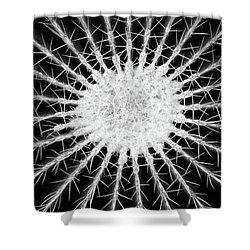Barrel Cactus No. 6-2 Shower Curtain