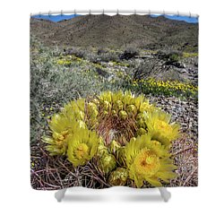 Shower Curtain featuring the photograph Barrel Cactus Super Bloom by Peter Tellone