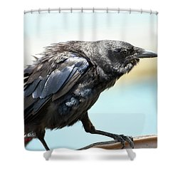 Barrel Surfing Shower Curtain