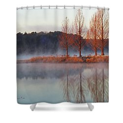 Barren, Beautiful Trees Shower Curtain