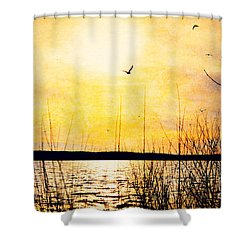 Shower Curtain featuring the photograph Barren by Kelly Nowak