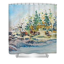 Barrier Bay Shower Curtain