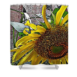 Barrio Sunflower 3 Shower Curtain by Sarah Loft
